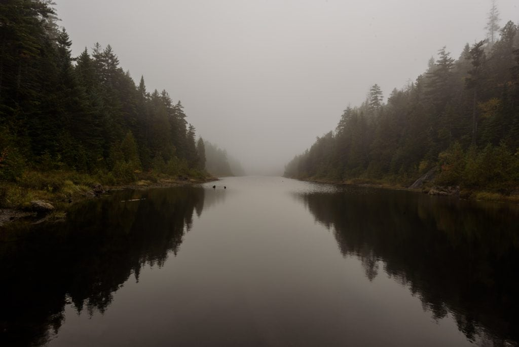 Foggy view from the middle of the Opalescent River